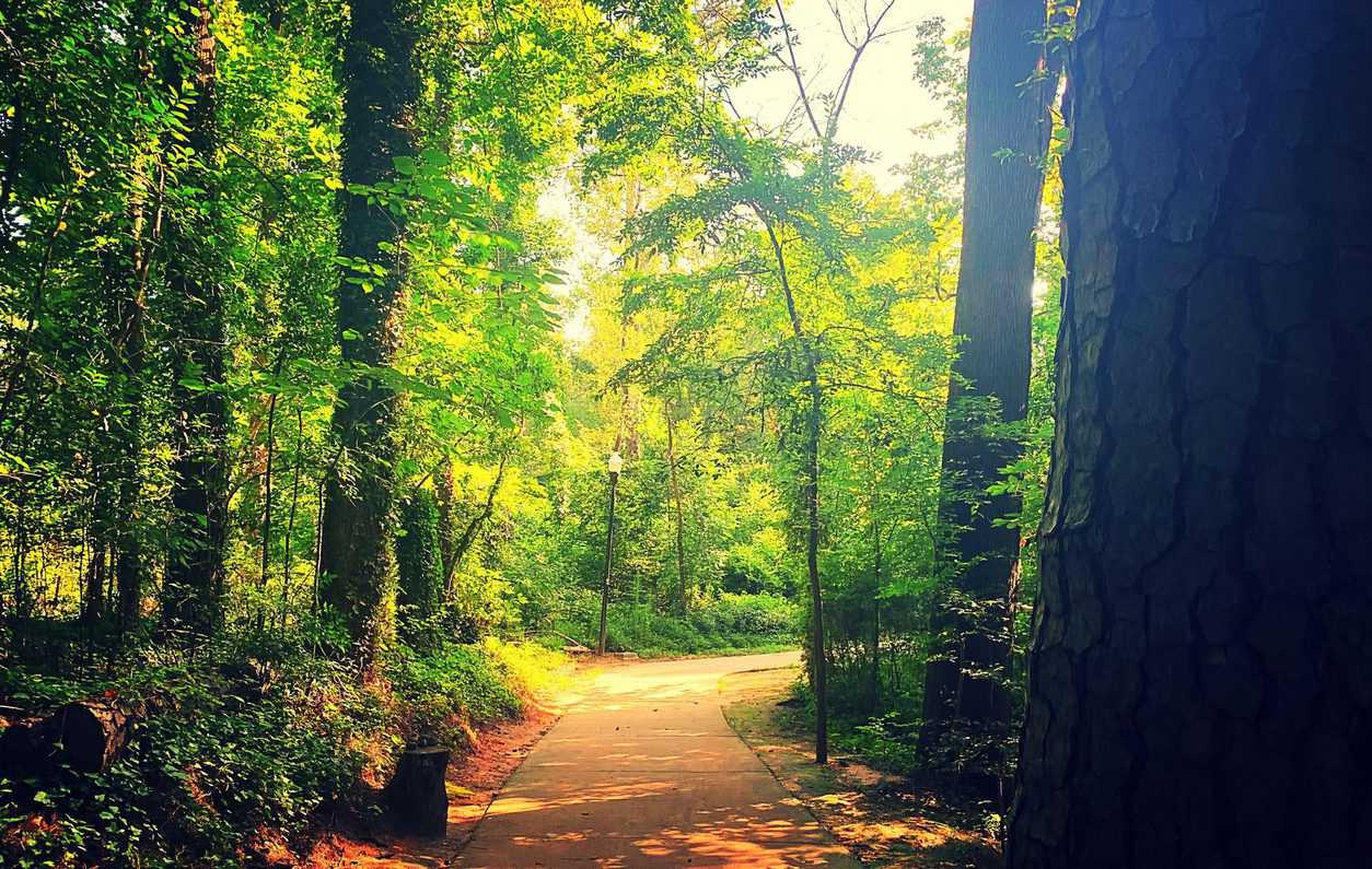 Escape to Cayce, SC for a Nature-filled Vacation